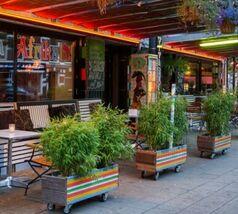 Nationale Diner Cadeaukaart Rotterdam Viva Afrika
